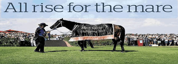 Headline| All Rise For The Mare