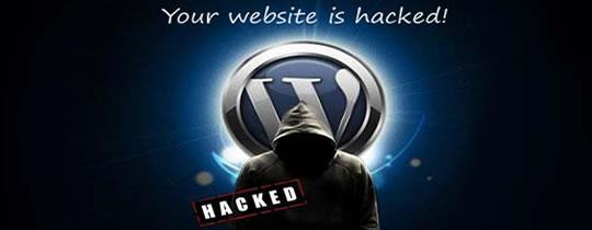 Hacked WordPress   What Next?
