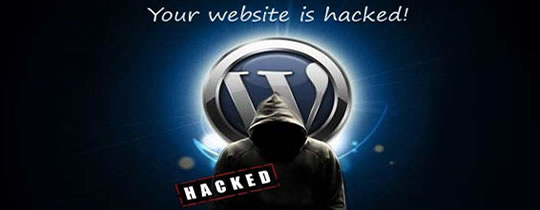 Hacked WordPress | What Next?